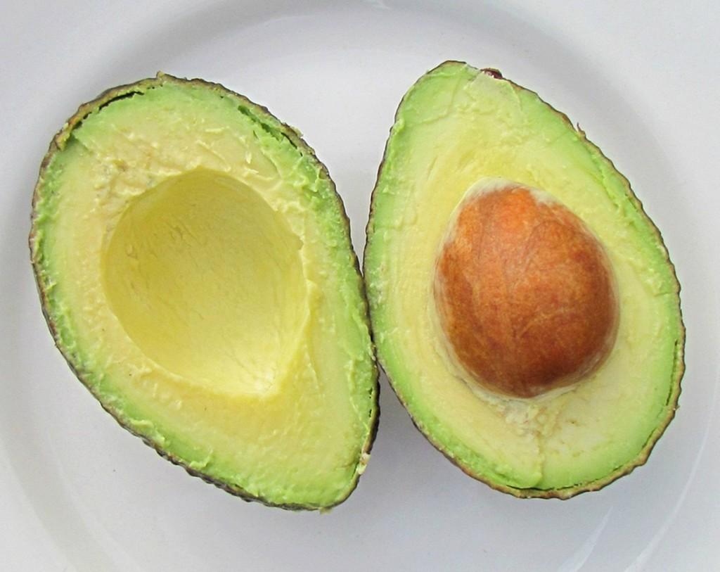 avocado-71567