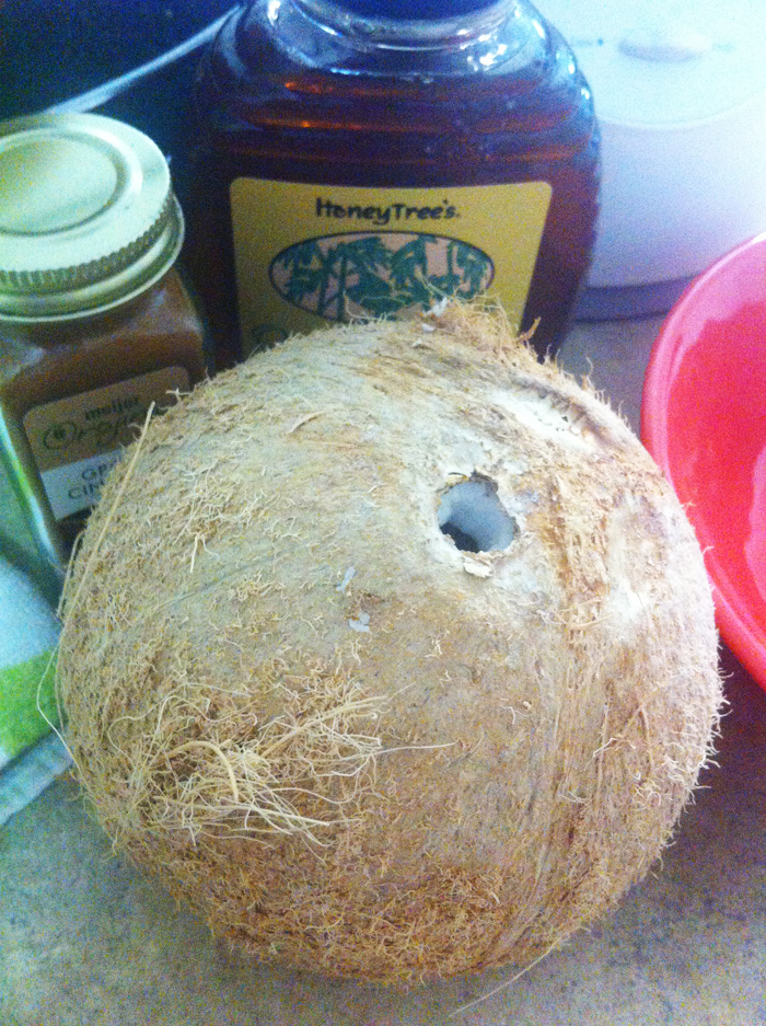 the coconut before it was made into coconut milk